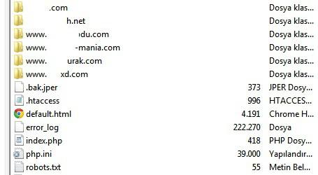 normal hostinglerde yer alan düzensiz domain taslağı