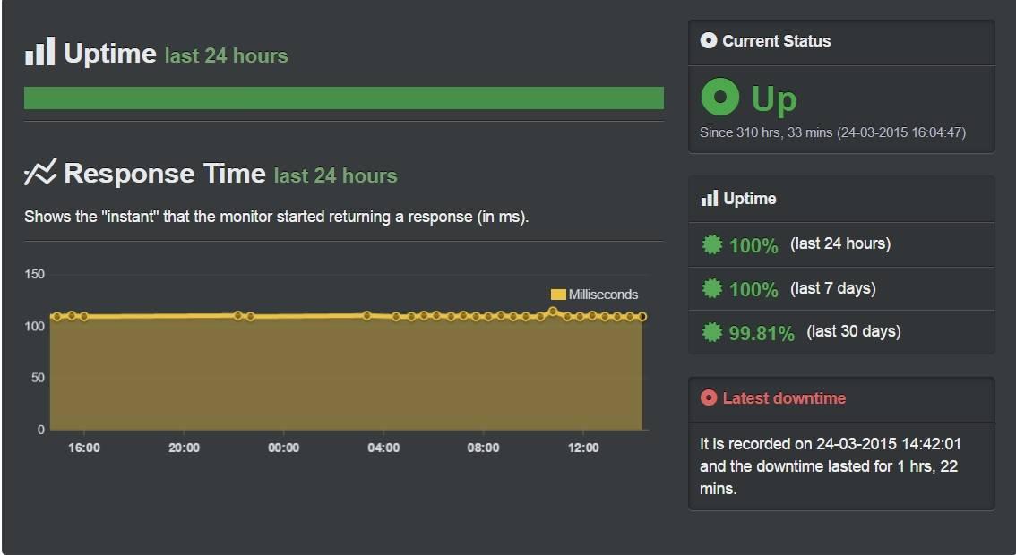 hostnine uptime değerleri