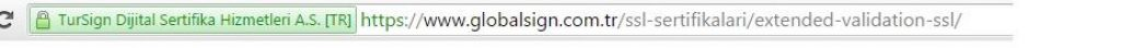e-ticaret siteleri icin extended ssl ornegi