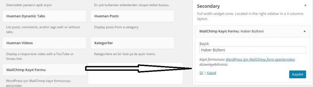 wordpress bilesen menusune haber bülteni eklemek için atılması gereken adımlar.