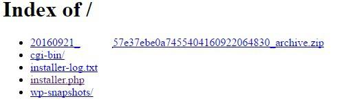 site yedeklemede atılması gereken ilk adımlar ve installer dosyasının çalıştırılması