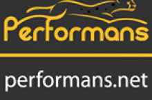 Performans.net hosting incelemesi