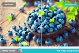 WordPress resim optimizasyonu nasıl yapılır? Neden önemli?