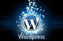 WordPress 4.6 güncellemesi, kısa notlar ve fikirlerim